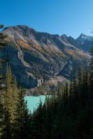 Check out that turquoise color of Lake Louise down below.
