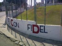 Support for Fidel