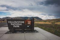 Bye-bye Yellowstone