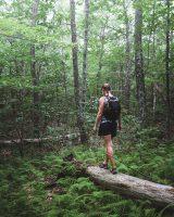 Monument Trail hike.