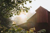 Daybreak on Stony Creek Farmstead is magical.