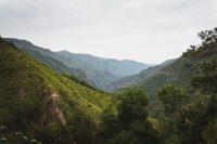 A spectacular view from the Levada das 25 Fontes hike.