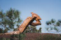 Near Torrey Pines State Natural Reserve, La Jolla, California