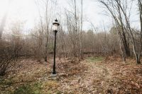 Amazing antique and unique lampposts are installed on the property.