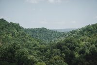 The lush views from the Rim Trail at Robert H. Treman State Park.