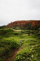 Ohai Trail, Maui