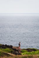 Whale tail! Above my head, Ohai Trail, Maui