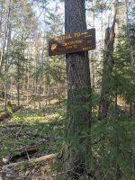 Cowhorn Pond side trail