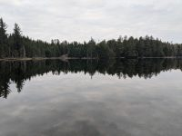 Morning at Cowhorn Pond campsite