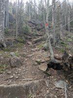 Climbing Cat Mtn