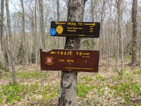Trail to Cat Mtn