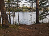 Views from Peavine Swamp Loop 3 Campsite