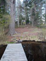 Views of Peavine Swamp Loop 3 Campsite